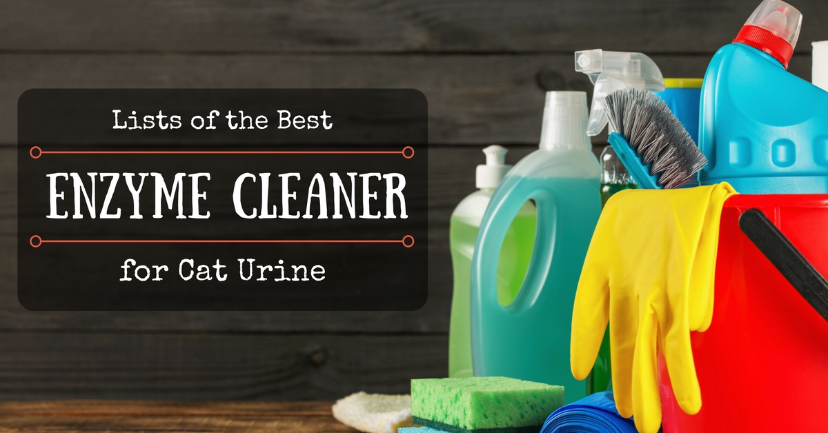 10 Best Enzyme Cleaner For Cat And Dog Urine Reviews 2019
