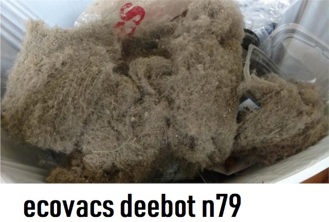 ecovacs-deebot-n79-pick-up-hair-and-dirt