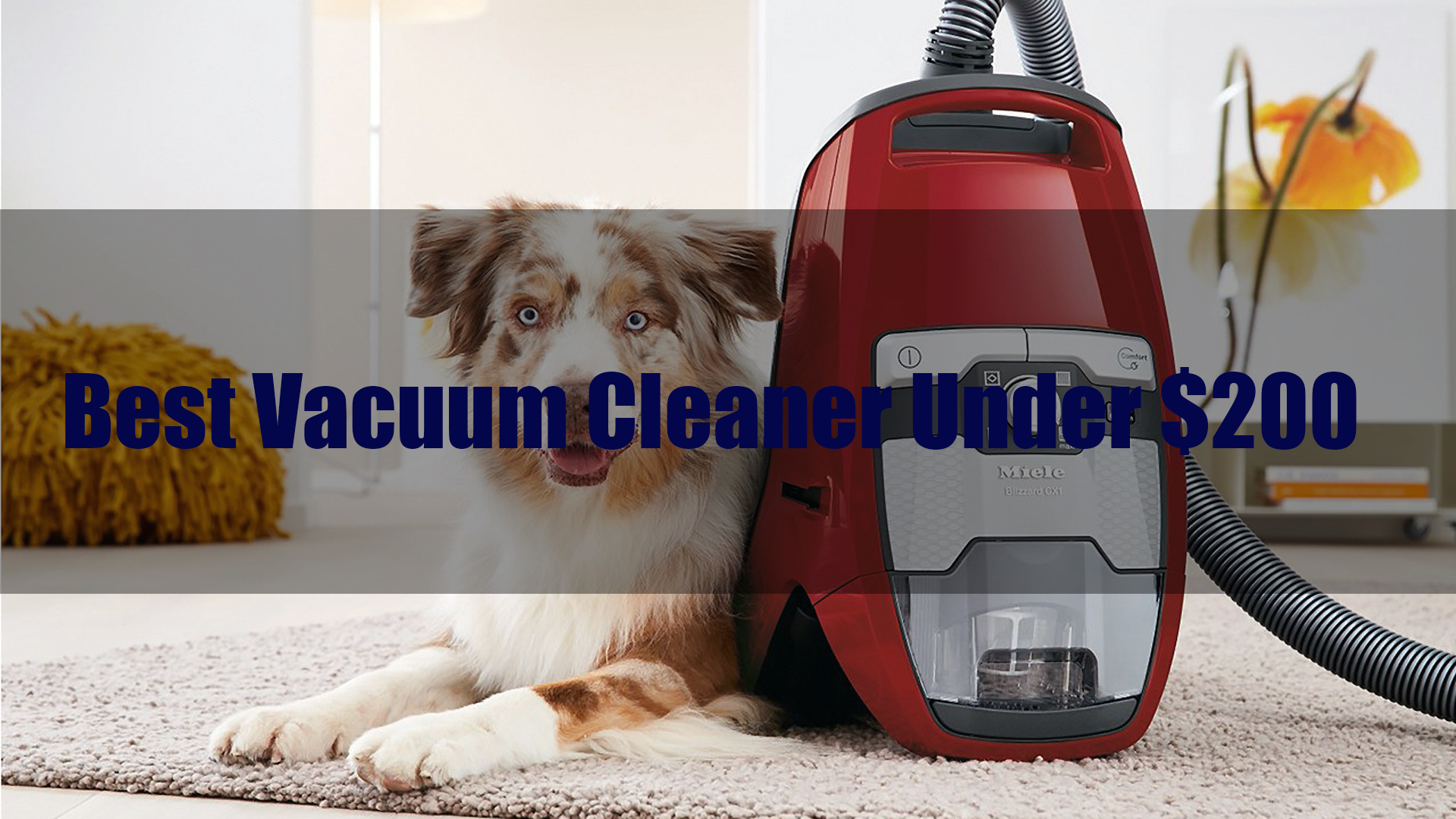 Best Vacuum Cleaner Under 200 2019 Reviews And Guide