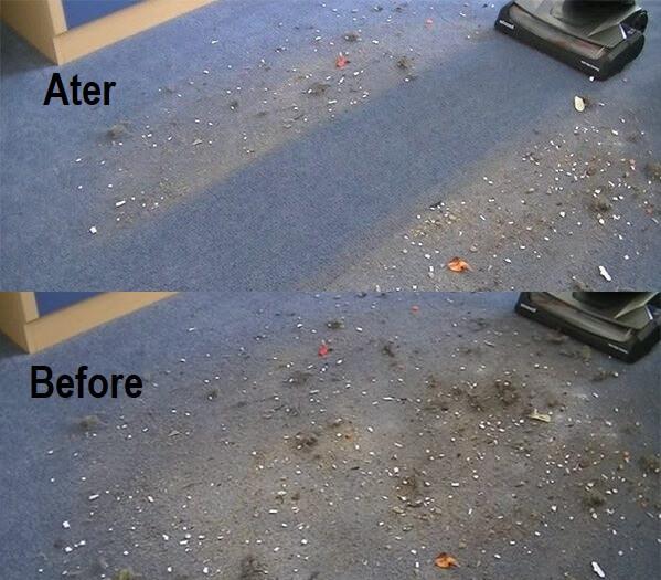 best vacuum for carpet under 200