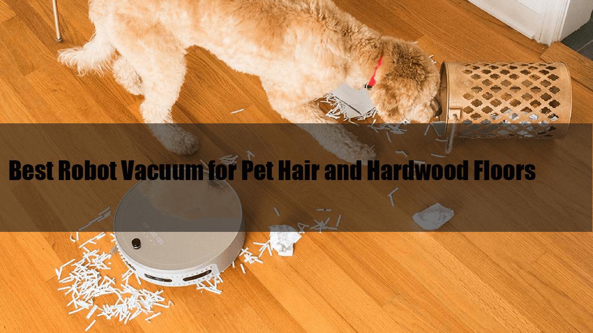 Best Robot Vacuum For Pet Hair And Hardwood Floors Reviews