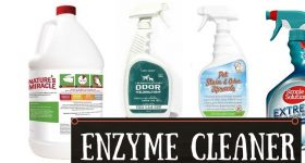 best-enzyme-cleaner-for-pet-urine
