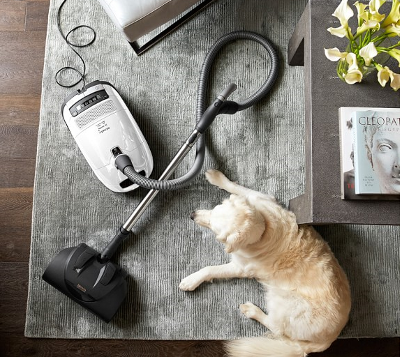 best vacuum for allergies and pets