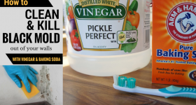 how-to-get-rid-mold-with-vinegar-and-baking-soda