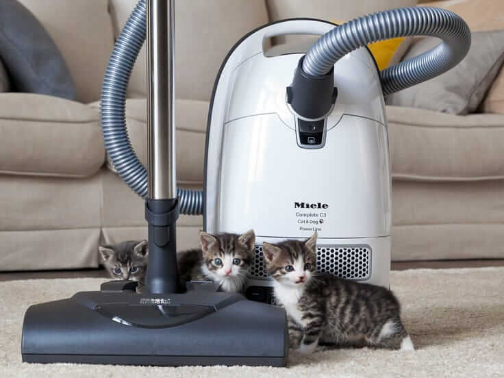 Best-Vacuum-Cleaner-for-Pet-Hair-Reviews