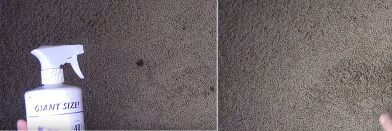 How to Remove High Traffic Stains from Carpet?
